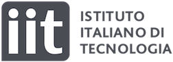 Iit logo v3 horizontal pos 1000px
